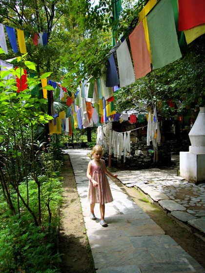 Florence in the gardens of the Norbulingka Institute near Dharmsala, India.